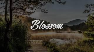 MITOSAN/미토 - Moonlight Instrumental