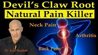 Devil's Claw Root - Natures Super Pain Killer for Neck/Back Pain, Arthritis, Joint Pain