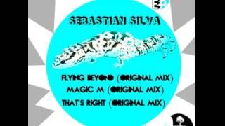 Flying Beyond (Original Mix)