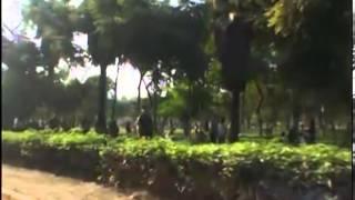 Limeños celebrarán en parques zonales