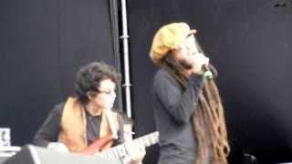 Lion Reggae  - Tu Belleza Jamming Festival 2014