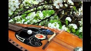 """Bilka - """"PRIMA VISIONE"""" Mandolin orchestra.avi"""