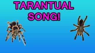 Tarantulas Song! | ByPluto