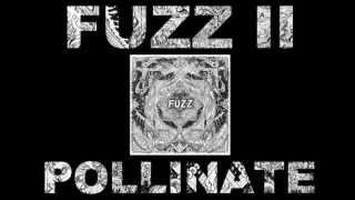 FUZZ - POLLINATE
