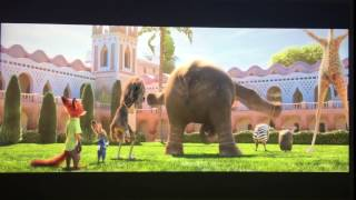 Zootopia: Nangi the Elephant's butt