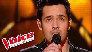 The Voice 2013   Yoann Fréget - Earth Song (Michael Jackson)   Finale