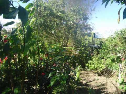 Restaurantes en Carazo Nicaragua Naturaleza