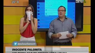 """Concejal sufrió broma de los """"gemidos"""" en plena sesión"""