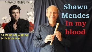 Shawn Mendes - In my blood (note originali)