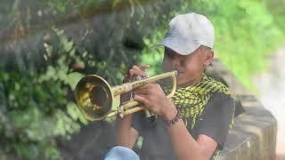 Despacito (Trumpet Cover)
