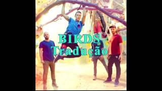 Birds - Coldplay (Tradução PT)