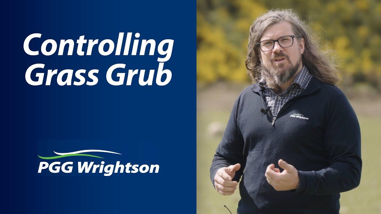 Controlling Grass Grub | PGG Wrightson Tech Tips