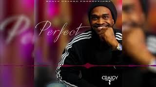 Craigy T - Perfect (Ed Sheeran Reggae Version) [Official Audio] | Jamaican Music 2018 | FSOR