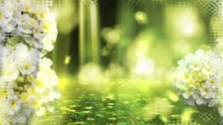 Seven 24 - Paradise (Original Mix)