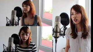 Fleetwood Mac/Dixie Chicks cover - Landslide (cover)