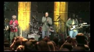 Ziggy Marley | Into the Groove | Love is My Religion LIVE