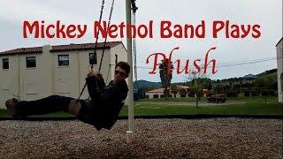Mickey Netnol Band Cover of Plush