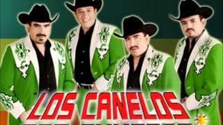 Hoy me Alejo de ti-Los Canelos de Durango