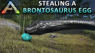 Stealing a Brontosaurus Egg • ARK: Survial Evolved