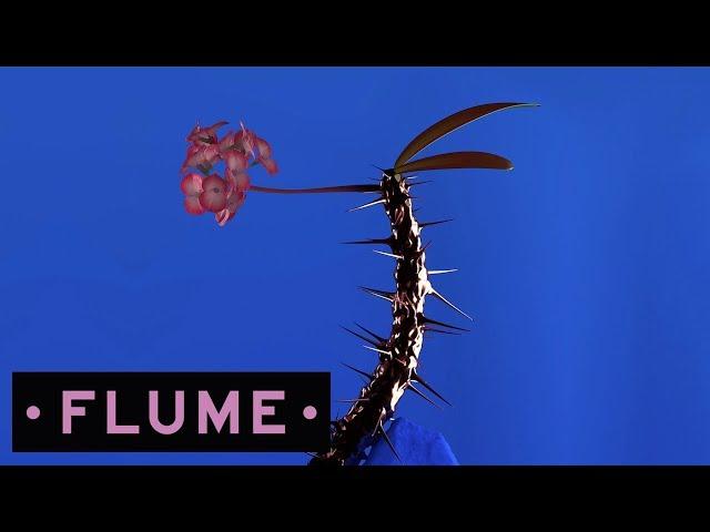 'Hyperreal', de Flume y Ku?ka.
