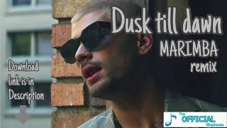Zayn - Dusk Till Dawn ft.Sia - The best Marimba remix ringtone for iPhone