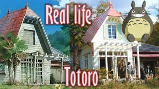 My Neighbor Totoro's house in real life! となりのトトロ サツキとメイの家