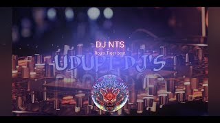 AKON-TIGER BEAT BY DJ NTS