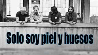 Foo Fighters - Skin and bones (subtitulos en español)