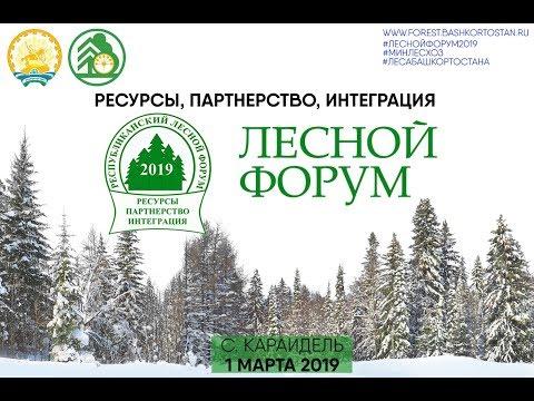 Лесной форум 2019 «Ресурсы, партнерство, интеграция» (полное видео)