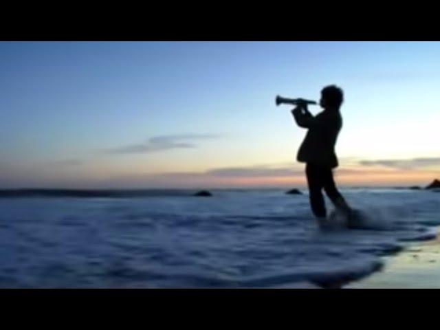 """Vídeo oficial de """"Elephant Gun"""" de Beirut"""
