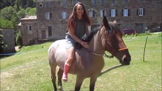 Resine rose et equitation pink leg cast