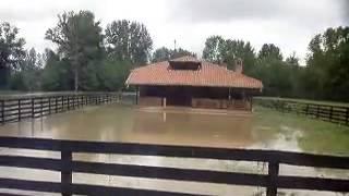 Donja Livadica - (ADA) Poplava