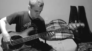 Red Hot Chili Peppers - Easily - bass cover