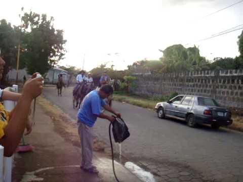 Caballos en Nandaime