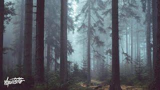 DNZ - Wanderlust (Nomyn Remix)