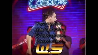 Camarote - Wesley Safadão [Áudio Oficial]