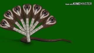 Nandhni 7 headed snake on green screen