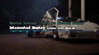 Martin Solveig & GTA vs. Michael Feiner - Intoxicated Mantra (preview)