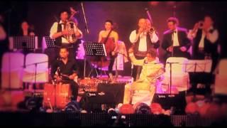 Balkan Müziğinin Efsane İsmi Goran Bregoviç Yarın Tsi 16:00'da TRT Türk'te
