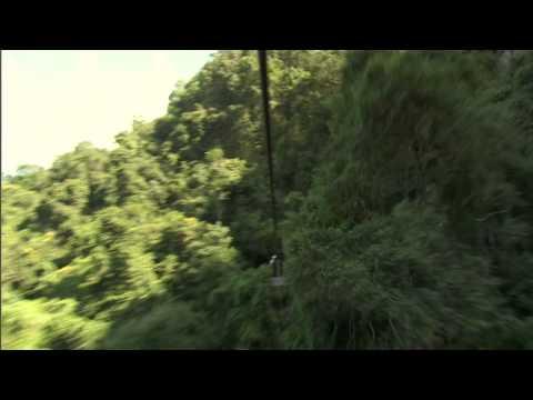 Canopy tour in Kwa-Zulu Natal