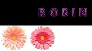 My Name Is Robin | Remix YOUR NAME Video in the YouTube Editor CC Tab | RobinCarlisle.Info