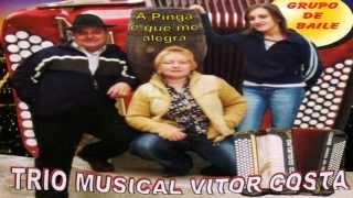 Trio Musical Vítor Costa - A pinga é que me alegra