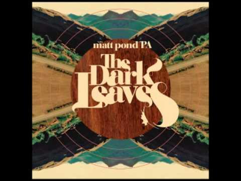 matt-pond-pa-sparrows-polyvinylrecords