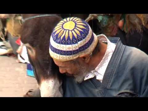 Fes Medina . Morocco