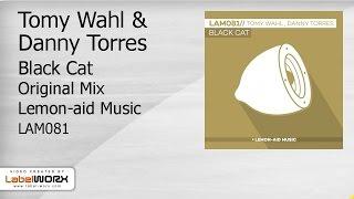 Tomy Wahl & Danny Torres - Black Cat (Original Mix)