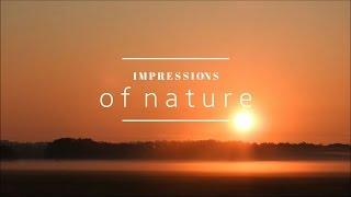 N A T U R E impressions, June 2016 | Kim Emily