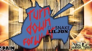 Punk Vs Pop #1: Turn Down For What (Upon a Burning Body Vs DJ Snake)