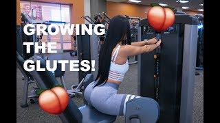 6 EXERCISES FOR BETTER GLUTES width=