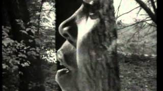 The first cut is the deepest - P P Arnold rare live performance