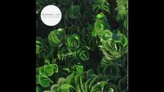 brightener // Morning Light (Audio)